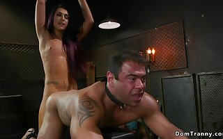 Trannie arse carnal knowledge fucks muscled chained kick off b lure